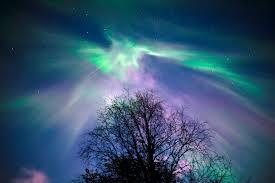 Aurora Fantasia