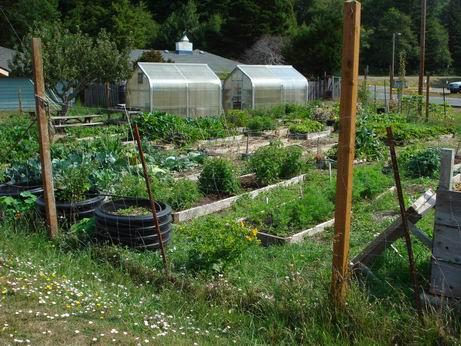 Riley Creek School Garden