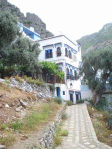 Villa Style Home in Upper Medina