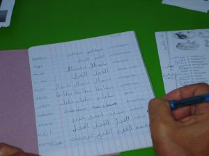 Tomas Cracking the Arabic Code