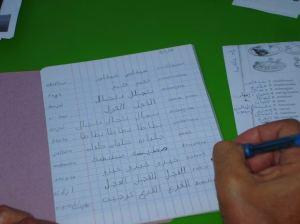 Tomas Cracking the Arabic Code