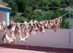 Many Clotheslines Have Meat Drying On Them Now
