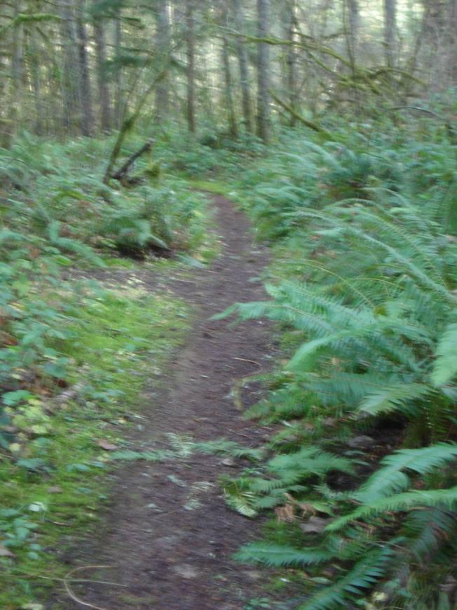Farther along the Solplex Trail