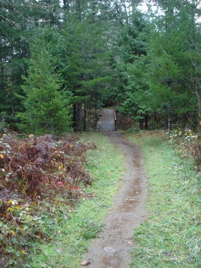 Trail from Creek Garden to Bridge