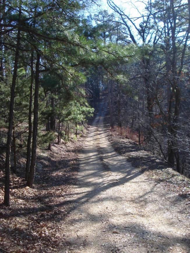 Walking on Country Lanes in Arkansas