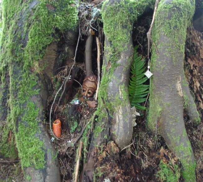 I went to investigate an interesting intertwining of three trees' root system and discovered a forest altar. Sweet.